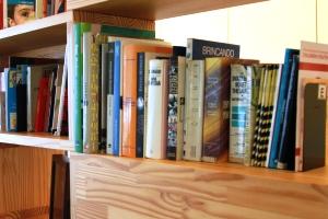 Imagem de uma prateleira com inúmeros livros de uma biblioteca.