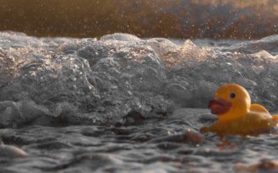 Foto de um pato de borracha boiando sobre agua, uma onda está se formando em seu lado.