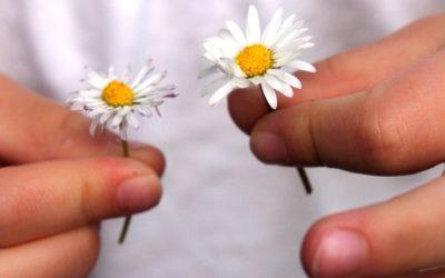 Foto de uma criança segurando duas flores, uma em cada mão.