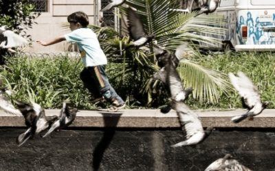 Foto de um garoto brincando em uma praça com vários pombos voando em volta dele.