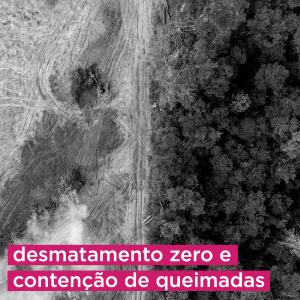 Foto em preto e branco de terreno com metade da área desmatada e metade coberta por árvores. Texto na imagem: desmatamento zero e contenção de queimadas