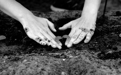 Foto em preto e branco mostra criança plantando árvore em referência à mitigação das mudanças climáticas