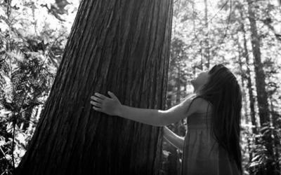 Foto em preto e branco mostra criança abraçando árvore e olhando para cima. Representa a relação das crianças indígenas com a natureza